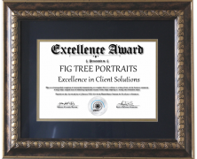 Excellence Award for 2018